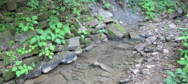 Creek1-1